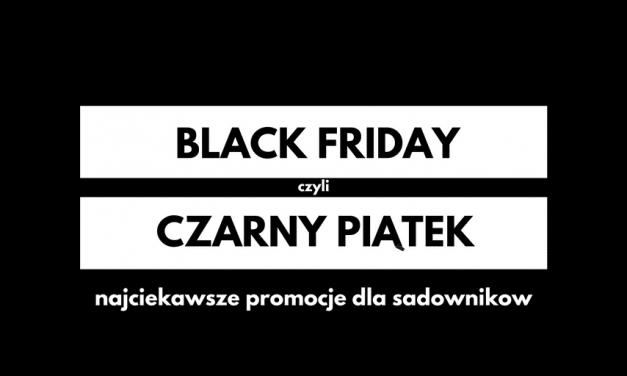 Promocje na czarny piątek dla Applowców